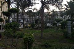 Scene in Alexandria, Egypt