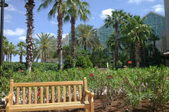 Outside Gaylord Palms Orlando Florida, USA