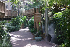 Rainforest inside Gaylord Palms, Orlando, Florida, USA