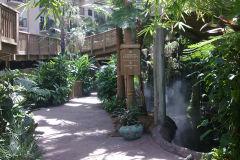 Rainforest inside Gaylord Palms, Orlando, Florida, USA