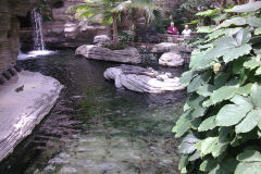 A lake inside the Gaylord Palms, Orlando, Florida, USA
