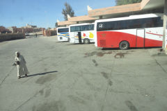 At the bus station in Ouarzazate Morocco