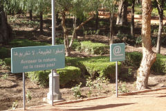 A park in Marrakech, Morocco