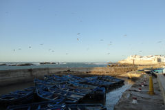 Harbour in Essaouira, Morocco