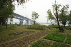 A walk along the Yangtze River in Nanjing, China