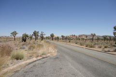 Landscape in Joshua Tree National Park, California, USA