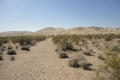 Landscape in the Mojave Desert, California, USA