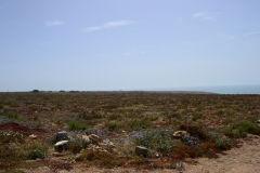 Landscape between Agadir and Sidi Ifni in Morocco