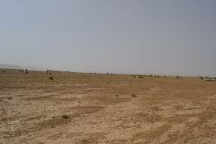 Sahara desert landscape at Mhamid, Morocco