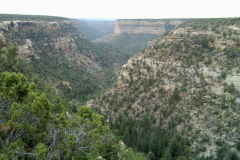 Landscape near Mesa Verde National Park, Colorado, USA