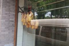 Ducks hanging around in Beijing, China