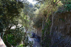 Views inside the Gole Alcantara Botanical and Geological Park, Sicily, Italy