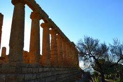 At the historic site of the Valley of Temples in Agrigent, Sicily, Italy