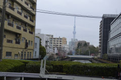 The Tokyo Sky Tree from distance in Tokyo, Japan