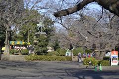 Inside a park in Tokyo, Japan