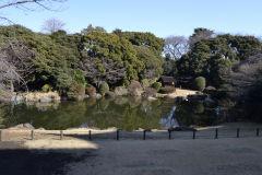 A park in Tokyo, Japan