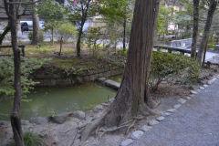 In a park in Kamakura, Japan