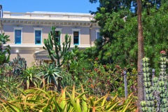 View of the Botanical Garden Sydney, Australia