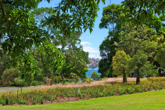 View of the Botanical Garden Sydney, Australia
