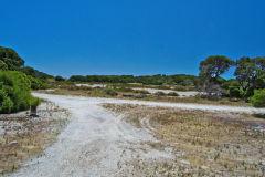 Scene at Rottnest Island, Western Australia