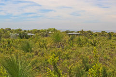 Landscape in Western Australia, north of Perth