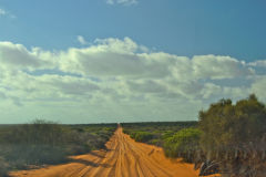 Dirt road in the way to Big Lagoon at the Shark Bay in Western Australia