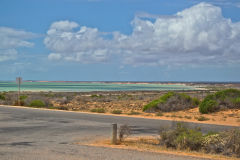 At Little Lagoon at the Shark Bay, Western Australia