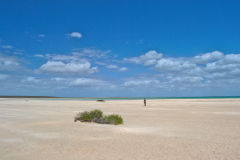 Shell Beach at Shark Bay, Western Australia
