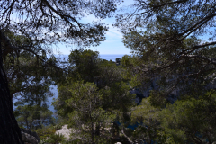 Hiking in the Calanques near Marseille, France