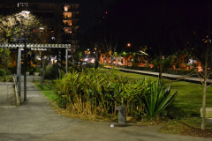A night scene in the streets of Zetland, Sydney, Australia
