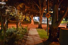 A night scene in the streets of Zetland, Sydney, Australia