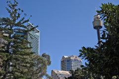 View in the Royal Botanical Garden Sydney, Australia