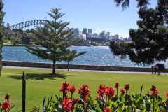 Sydney Harbour Bridge taken from the Royal Botanical Garden Sydney, Australia