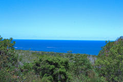 View on a hike at the North Cape near Manly in Sydney, Australia