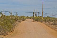 Landscape near Phoenix, Arizona, USA