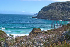 View from walking to Remarkable Cave on Tasman Peninsula Tasmania.