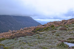 Landscape on Rodway Range in Mount Field National Park Tasmania