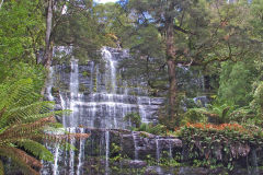 Russel falls water fall in Mount Field National Park Tasmania