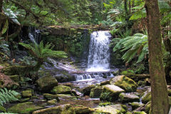 Water fall in Mount Field National Park Tasmania