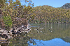 A lake in Mount Field National Park Tasmania