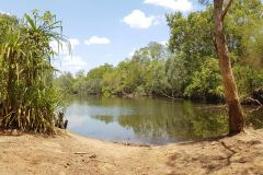 A river in Litchfield National Park Northern Territory in Australia 2019