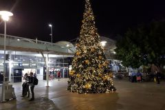 The christmas tree in front of the airport in Sydney