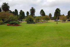 Centennial Park in Sydney after rain in January 2020