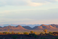 Sunset in the Kalahari in Namibia