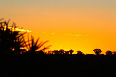 Sunset in the Kalahari Desert in Namibia