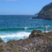 🇦🇺 2018 Tasmania - Day 1 - Tasman Peninsula